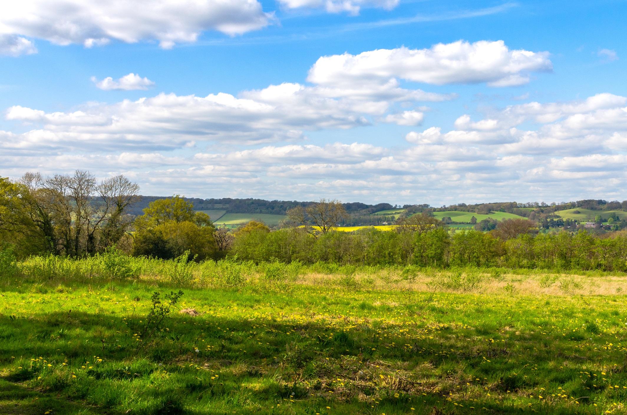 Beautiful green hills landscape